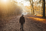 Boy walking through a sun drenched forest - NMSF00017