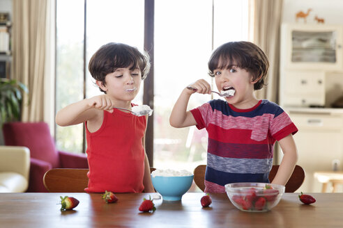 Portrait of twin brothers eating whipped cream at home - LITF00557