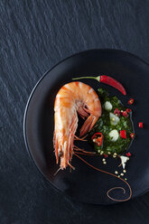 Prawn with hernbs, chili and garlic on black plate - CSF28154