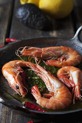 Prawns with hernbs, chili and garlic in iron pan - CSF28160