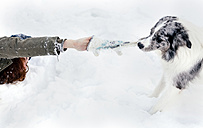 Young woman playing with her border collie in the snow - MGOF03144