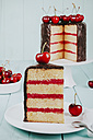 Piece of cake with chocolate icing and cherries on plate - RTBF00788