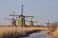 Netherlands, South Holland, Kinderdijk, Windmills at a canal with warm morning light - RUEF01766