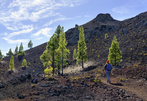Spain, Canary islands, Tenerife, woman on hiking trail, Montana Negra or Volcan Garachico, near El Tanque - SIEF07384