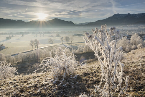 Germany, Bavaria, Grossweil, sunrise in winter - SIEF07389