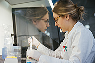 Laboratory technician pipetting in lab - ZEDF00567