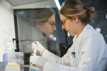 Laboratory technician pipetting in lab - ZEDF00567