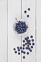 Collectors cup of blueberries on wood - GWF05184