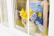 Flower vase of daffodils and hyacinths behind windowpane - NMSF00045