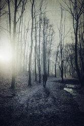 Man on forest path at sunrise - DWIF00847