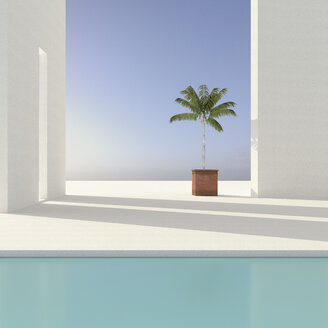 Potted palm tree on terrace, 3D Rendering - UWF01176