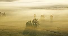 Germany, Bavaria, sunrise above Loisachmoor - LHF00528