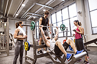 Group of people in gym training weight lifting - HAPF01584