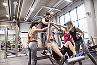 Group of people in gym training weight lifting - HAPF01587