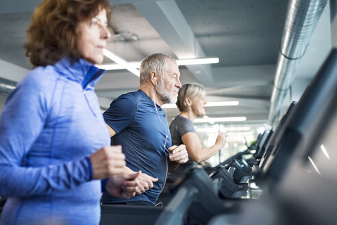 Group of fit seniors on treadmills working out in gym - HAPF01641