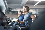 Group of fit seniors on treadmills working out in gym - HAPF01644