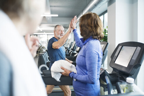 Group of fit seniors on treadmills working out in gym - HAPF01647