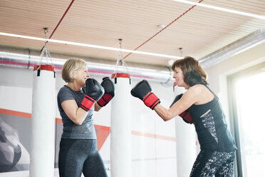 Two fit senior women boxing in gym - HAPF01677