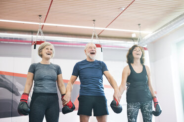 Group of happy seniors working out in gym, boxing - HAPF01683
