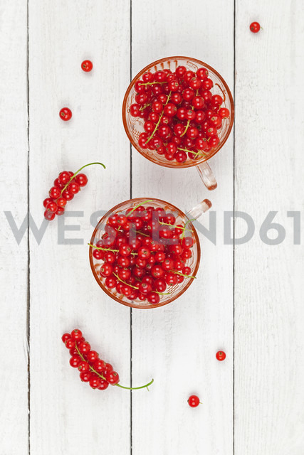 Two glasses of red currants on white wood - GWF05190