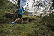 Italy, Alagna, trail runner on the move in forest - ZOCF00263