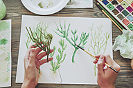 Young woman painting plants with water colors - RTBF00856