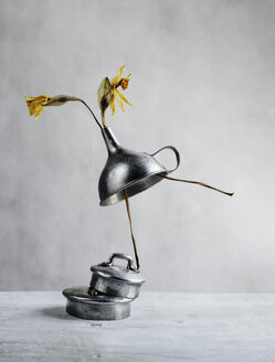 Still life with withered daffodils and funnel - NIF00085