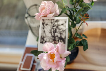 Instant photo of a woman and flower - JOSF00803