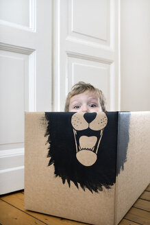 Boy inside a cardboard box painted with a lion - PSTF00001