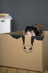 Boy inside a cardboard box painted with a cow - PSTF00019