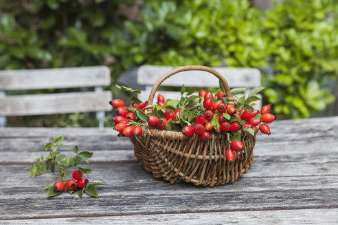 Wickerbasket of rosehips on garden table - GWF05209