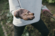 Hand of gardening woman holding a germ bud, close-up - MFF03497