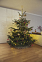 Decorated Christmas tree in living room - MFF03504