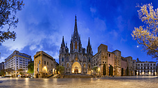 Spain, Barcelona, panoramic view of Barcelona Cathedral - YRF00157