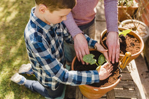 Father and son planting seedling together - NMSF00116
