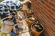 Boy watering seedling in flower pot - NMSF00119