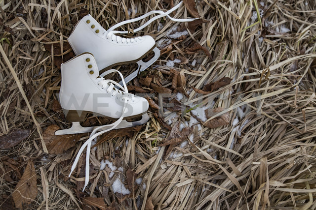 Ice skates lying in icy weeds - MFF03522