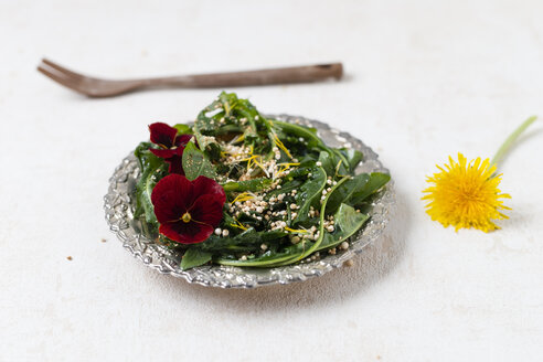 Dandelion salad with Horned Violet and puffed quinoa - MYF01921