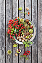 Tin plate of autumn harvest on wood - GWF05215