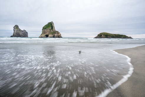 New Zealand, South Island, Tasman Sea, Wharariki Beach - STSF01207