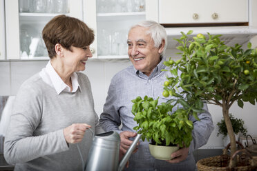 Senior couple watering potted plants in kitchen - WESTF23382