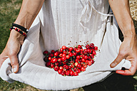 Woman holding white apron full of cherries, partial view - GEMF01657