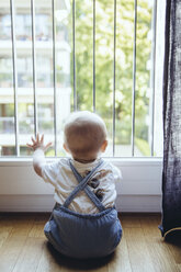 Back view of baby boy looking through window - MFF03638