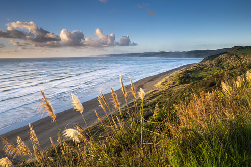 New Zealand, North Island, Raglan, Ngarunui Beach in the evening - STSF01229