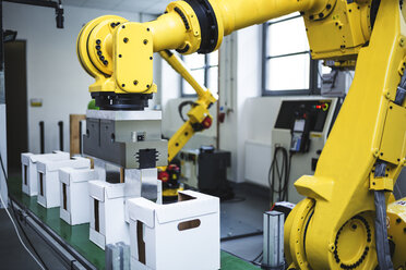 Industrial robot at work - WESTF23456