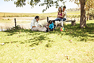 Extended family relaxing on meadow - ZEF13955
