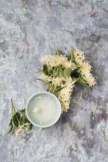 Cup of elderflower tea and elderflowers - MYF01926