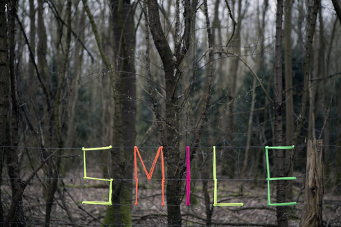 Woven word smile in forest - PSTF00031