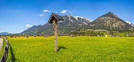Germany, Bavaria, Allgaeu, Lorettowiesen, wayside cross - WGF01095