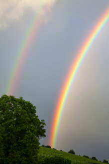 Double Rainbow - NDF00658